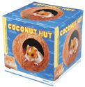 Picture of Coconut Hut