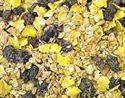 Picture of Dawn Chorus Blackbird & Thrush No Mess Raisin Mix 12.55kg