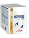 Picture of Royal Canin Rehydration Support Cat/Dog 15x29g
