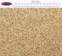 Picture of J&j Quail Mix 12.75kg