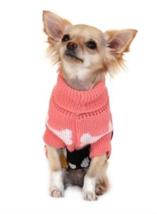 Picture of Pink Paws Dog Sweater