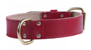 "Picture of Bull Terrier Leather Collar Plain Red 1.5"" X 16-19"""