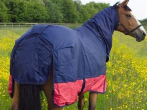 """Picture of Horse Rug Matterhorn Outdoor With Neck Navy/red 2 Tone 5' 6"""""""