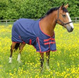 Picture of Horse Rug Snowdon Outdoor Standard Navy/red 2 Tone 7'