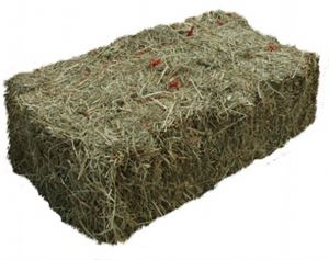 Picture of Hay Bale