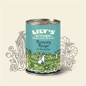 Picture of Lily's Kitchen Recovery Recipe 400g