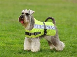 """Picture of Flecta Hi Vis Dog Jacket 25cm (10"""")"""