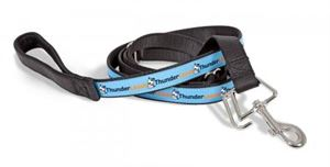 Picture of Thunderleash Large