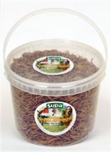 Picture of Supa Dried Mealworms 5ltr