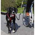Picture of Bicycle Dog Lead Attachment