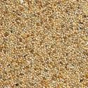 Picture of Budgie Seed 1kg